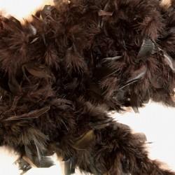 Musta höyhenboa
