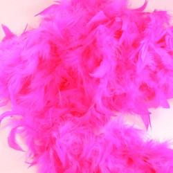 Pinkki höyhenboa
